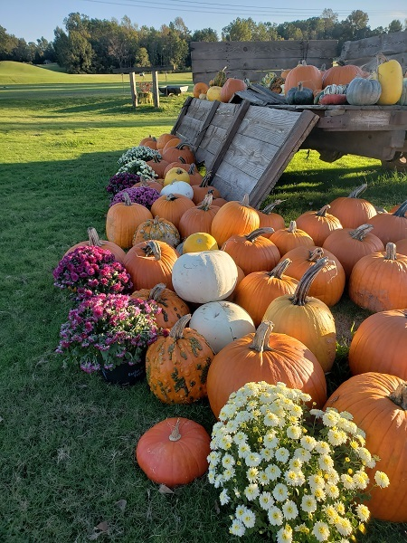 2019 Fall Festivals and Events