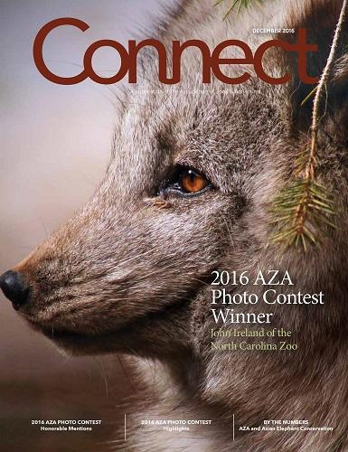 North Carolina Zoo's John Ireland Wins Prestigious Photo Competition