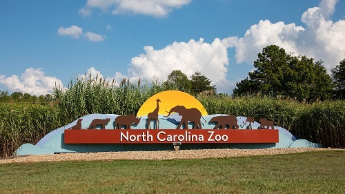North Carolina Zoo Offers Half-Price Admission for Hurricane Dorian Evacuees