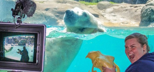 North Carolina Zoo Offers Virtual Summer Camps | Registration Now Open