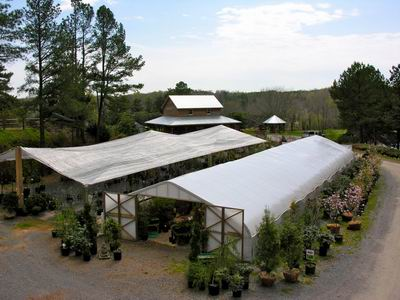 Toms Creek Nursery & Landscaping